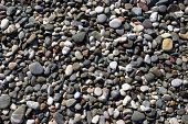 picture of homogeneous  - Coastal stones of different sizes - JPG