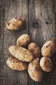 pic of root-crops  - Fresh organic potatoes - JPG