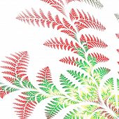picture of asymmetrical  - Asymmetrical pattern of the leaves in red and green - JPG