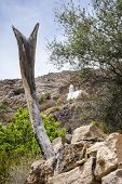 stock photo of jabal  - Image of landscape with mosque on Saiq Plateau in Oman - JPG