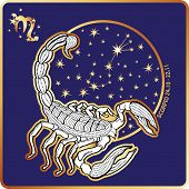foto of scorpio  - Scorpio zodiac sign - JPG
