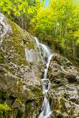 stock photo of acadian  - Moosehorn Trail Falls  - JPG