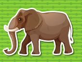 stock photo of enormous  - Illustraion of a single elephant with background - JPG