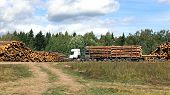 stock photo of logging truck  - Transportation of logs on the big timber carrier