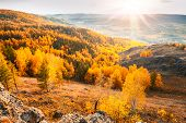 picture of mountain sunset  - Beautiful view of autumn forest in the mountains - JPG