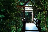 picture of vegetation  - lighted gazebo surrounded by tropical vegetation on the bridge through the night river - JPG