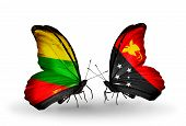 stock photo of papua new guinea  - Two butterflies with flags on wings as symbol of relations Lithuania and Papua New Guinea - JPG