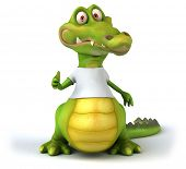 image of crocodile  - Crocodile with a white tshirt - JPG
