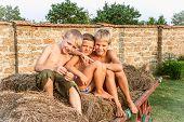image of hay bale  - boys sitting on a hay bale - JPG