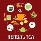 picture of mints  - Herbal tea flat infographic design with cup of hot tea on saucer - JPG
