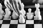 image of chessboard  - Hand with white knight on chessboard closeup - JPG