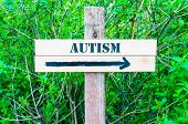 image of autism  - AUTISM written on Directional wooden sign with arrow pointing to the right against green leaves background - JPG