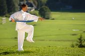 picture of tai-chi  - tai chi exercise with sword in nature on green field slovenia europe - JPG