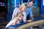 stock photo of manta ray  - Happy family looking at manta ray at the aquarium - JPG