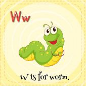 foto of worm  - Flashcard letter W is for worm - JPG