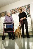 Elderly Caucasian woman using walker and middle-aged woman walking dog in hallway of retirement comm
