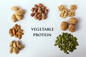Different Types Of Nuts And Seeds. A Full Source Of Vegetable Protein In Vegetarianism And Raw Food. poster