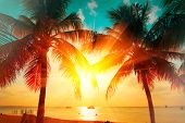 Sunset Beach with palm trees and beautiful sky landscape. Travel, Tourism, vacation concept backgrou poster