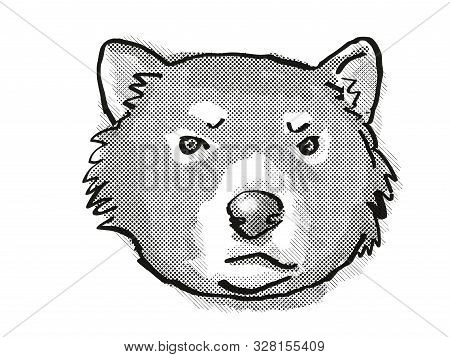 poster of Retro Cartoon Style Drawing Of Head Of A Tasmanian Devil , An Endangered Wildlife Species On Isolate