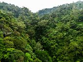 Aerial Descent Drone Shot Bali Green Mountain Jungle Landscape Indonesiaaerial Descent Drone Shot Ba poster