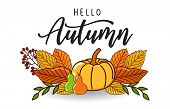 Autumn Sales Banner Background With Dry Leaf Decoration. Autumn Ad Leaves Flyer Label. Autumn Design poster