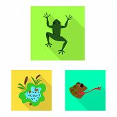 Vector Design Of Wildlife And Bog Symbol. Set Of Wildlife And Reptile Stock Symbol For Web. poster