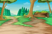 picture of hollow log  - Winding forest path with old log  - JPG