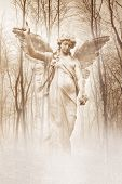 stock photo of cherubim  - Angelic female figure materialising in an atmospheric misty forest rendered in warm sepia tones - JPG