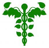 picture of holistic  - Illustration of a caduceus made up of leaves DNA or holistic medicine concept - JPG