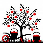 picture of hand-barrow  - vector apple tree and hand barrow with basket of apples - JPG