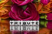 stock photo of tribute  - Tribute text and flowers in the background - JPG