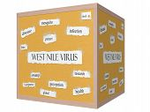 West Nile Virus 3D Cube Corkboard Word Concept