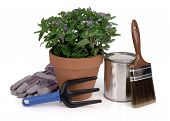 stock photo of paint brush  - potted plant - JPG