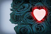 stock photo of blue rose  - A bouquet of blue roses to the right of the frame with a pink heart glowing on top of the roses illuminating part of the roses around it in red - JPG
