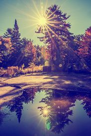 image of reflections  - Sun light beams shine behind trees creating a solar flare in a park landscape - JPG