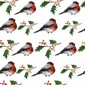 stock photo of christmas song  - Christmas seamless background with holly berries and bullfinches on white background - JPG