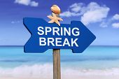 picture of spring break  - Spring Break on beach and sea in summer on vacation - JPG
