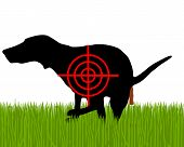 picture of crap  - Detailed and accurate illustration of aim at dogs crapping - JPG