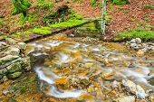 stock photo of covered bridge  - Small river in Balkan Mountains crossed by a bridge covered with moss - JPG