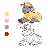 foto of color animal  - Game for children - JPG