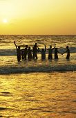 stock photo of beach party  - Happy holiday - JPG