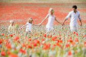 image of family fun  - Family walking through poppy field - JPG