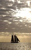 picture of sail-boats  - sail boat sailing of into the sunset with a plane flying overhead - JPG