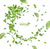 Green Flying Or Falling Off Leaves. Vector Abstract Foliage Background poster