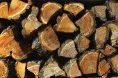 Background Of Firewood. The Texture Of Chopped Firewood On A Dark Background. A Bunch Of Firewood. H poster