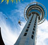 Bungee On Auckland Sky Tower