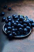 Bunches Of Fresh Ripe Blue Grapes On A Metal Plate Textural Table Background. Dark Grapes, Blue Grap poster
