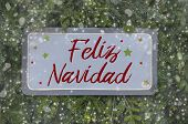 Fir Trees And Wooden Signboard With Spanish Word For Merry Christmas - Feliz Navidad poster