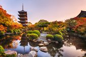 Ancient pagoda Toji temple in autumn garden, Kyoto, Japan. Tallest wooden pagoda in Japan and Unesco poster