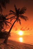 foto of sunset beach  - A beach scene with sunset in the background at Kuredu island - JPG
